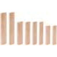 Festool DOMINO buk D 12x100/100 BU 498216